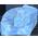 Fée Ailée ou Fée d'automne BlueMarbleSlab.2909