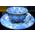 Fée Ailée ou Fée d'automne BlueandWhiteFloralTeaCup.3137