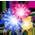 Dragon Sage de Noel Firework1.730